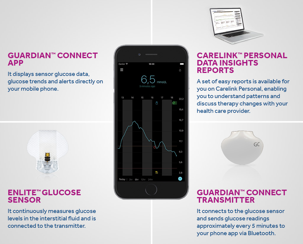 Components of continuous glucose monitoring